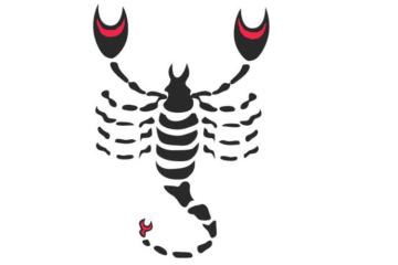 skorpio_863_460_sz
